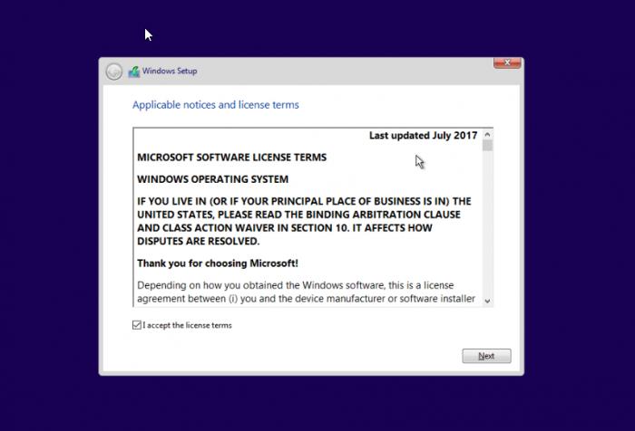 Windows 10 Pro Vultr ISO install 3