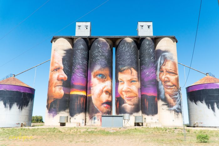 Sheep hills silo art silo trail 2019 1