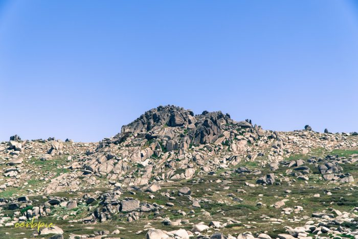 rocky terrain Mt Kosciuszko Summer 2019