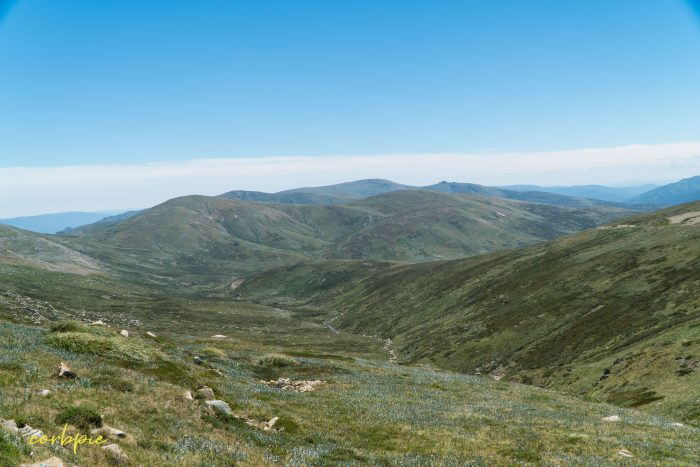 vast valleys