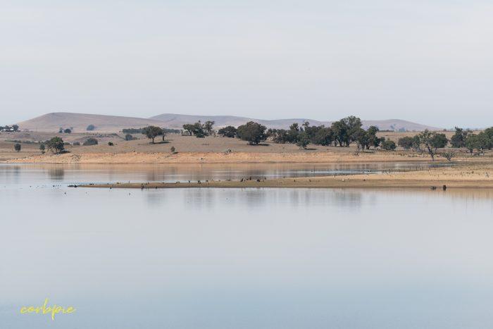Tullaroop Reservoir 8 2019