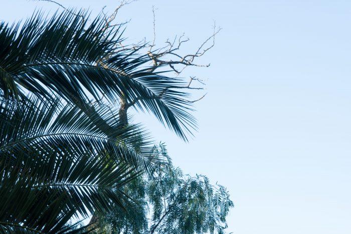 f10 aperture example