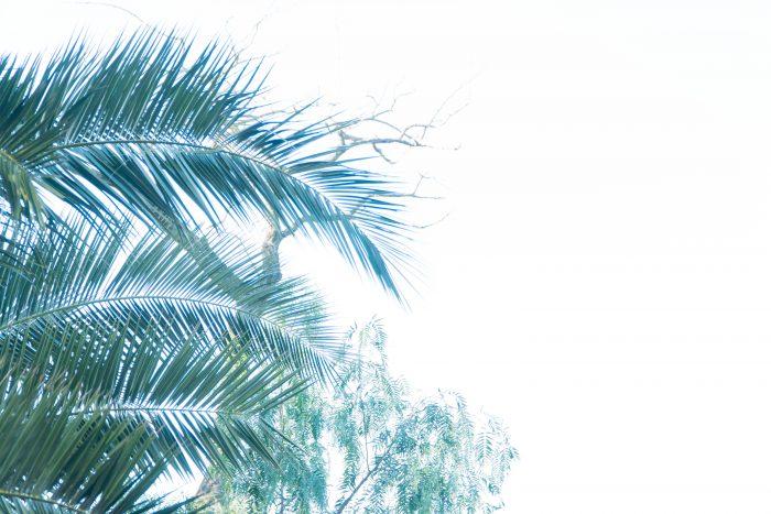 f4.5 aperture example