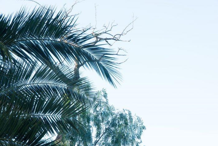 f8 aperture example