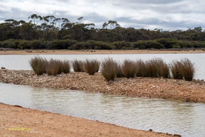 cockatoo hill reservoir 50mm 3