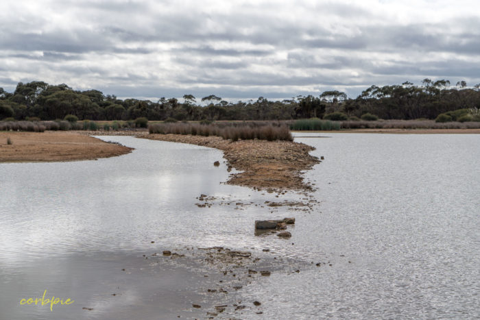 cockatoo hill reservoir 50mm 4