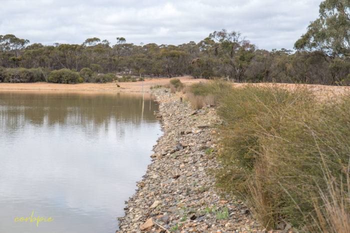 cockatoo hill reservoir 50mm 5