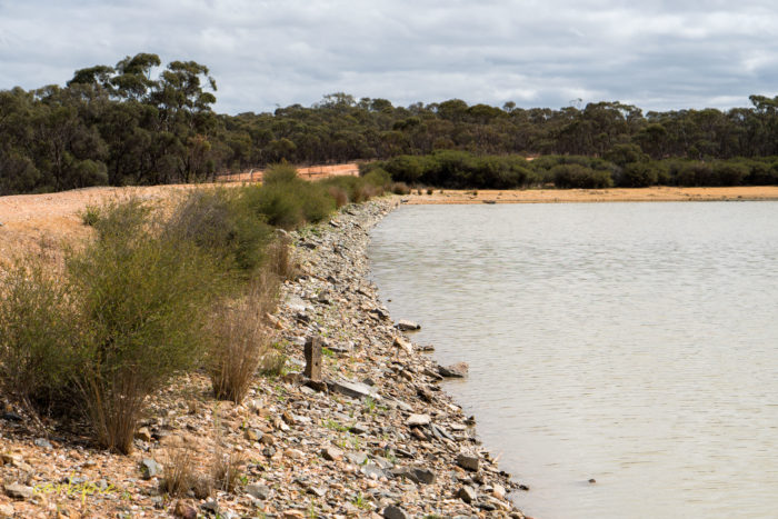 cockatoo hill reservoir 50mm 8