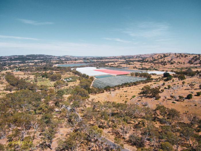 Mount Alexander Barkers creek reservoir