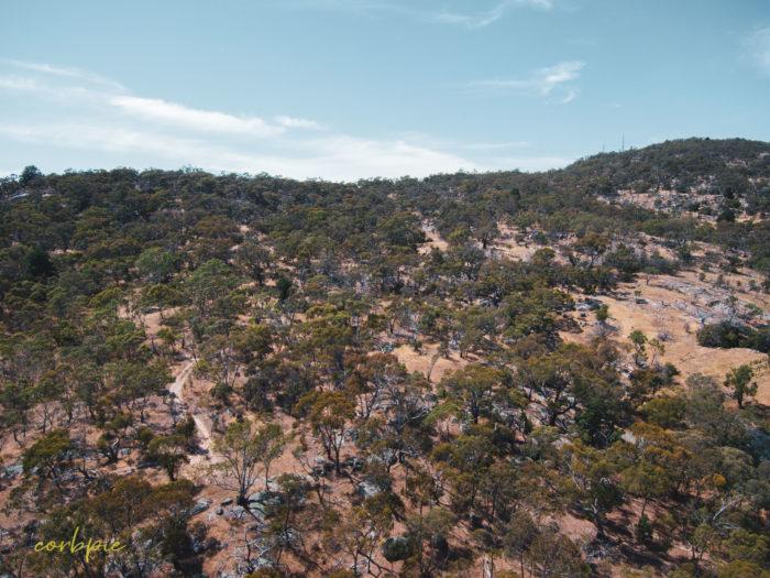Mount Alexander drone 11