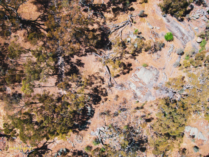 Mount Alexander drone 5