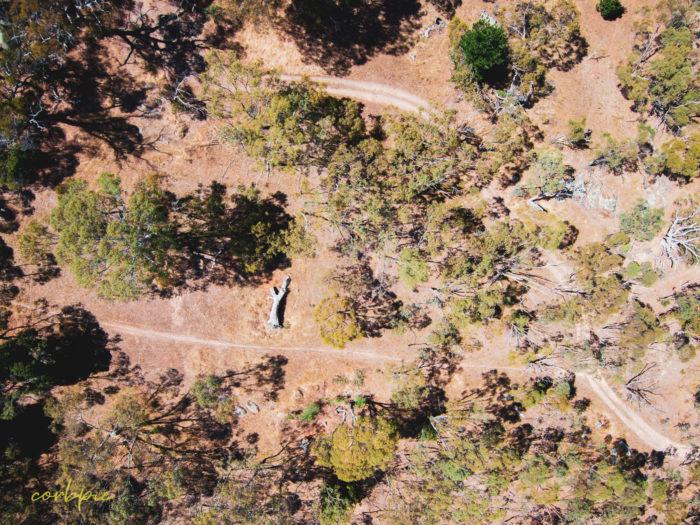 Mount Alexander drone 6