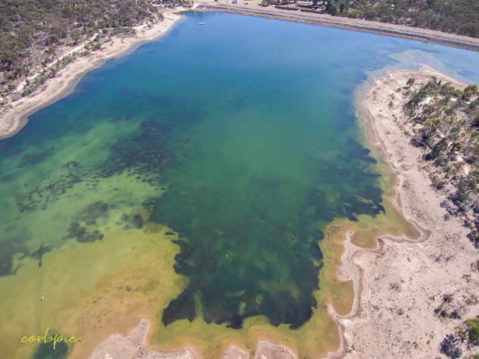 Crusoe Reservoir Bendigo summer