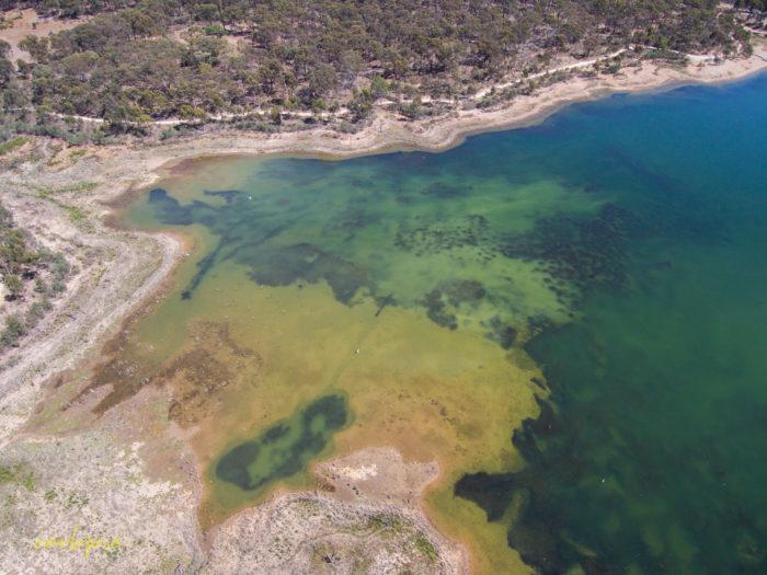 Crusoe Reservoir Bendigo 2