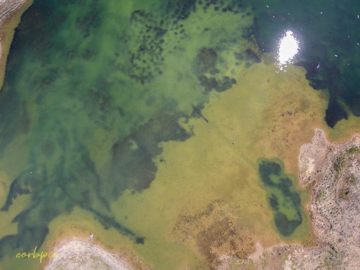 Crusoe Reservoir Bendigo 5