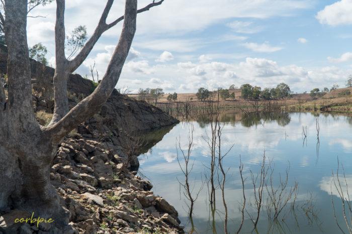 Lake Eppalock dropping levels 11