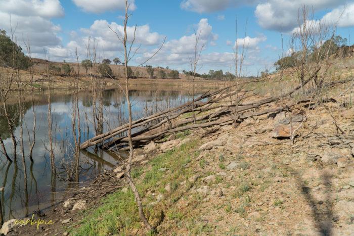 Lake Eppalock dropping levels 20