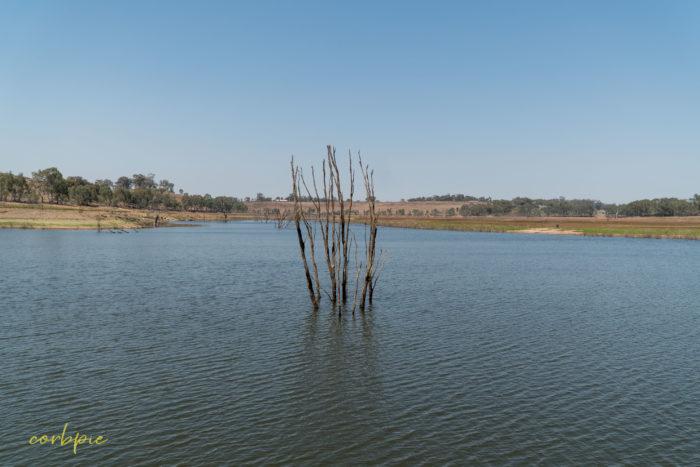 Lake Eppalock dropping levels 5