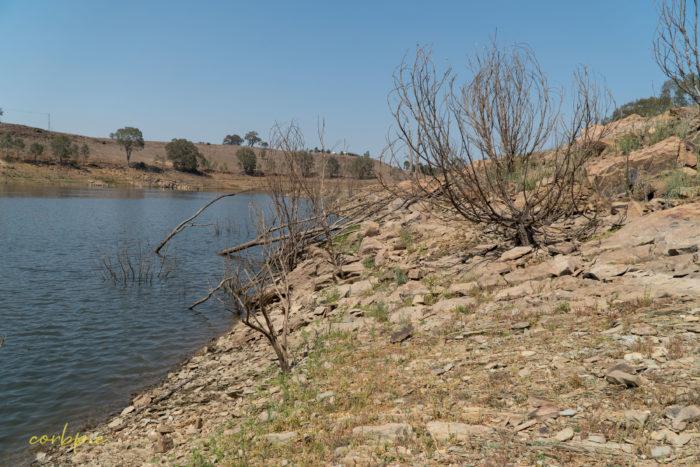 Lake Eppalock dropping levels 8