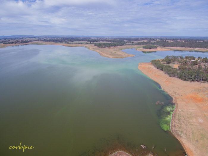Lake Eppalock blue green algae 10